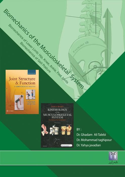 بیومکانیک دستگاه اسکلتی عضلانی (بیومکانیک اندام تحتانی: مفصل ران، زانو، مچ پا، پا، بیومکانیک راه رفتن، وضعیت های بدنی)