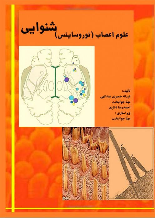 علوم اعصاب (نوروساینس) شنوایی